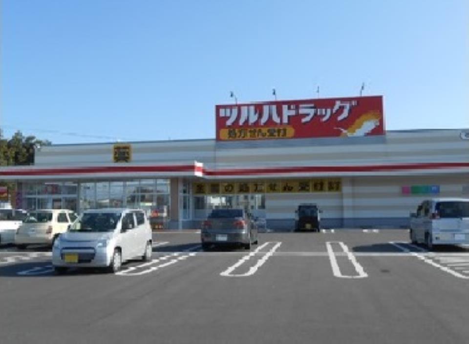 ツルハドラッグ宇都宮野沢店  /405m
